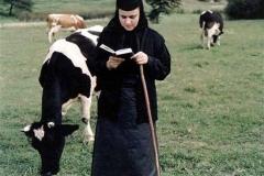 viata-in-manastire23